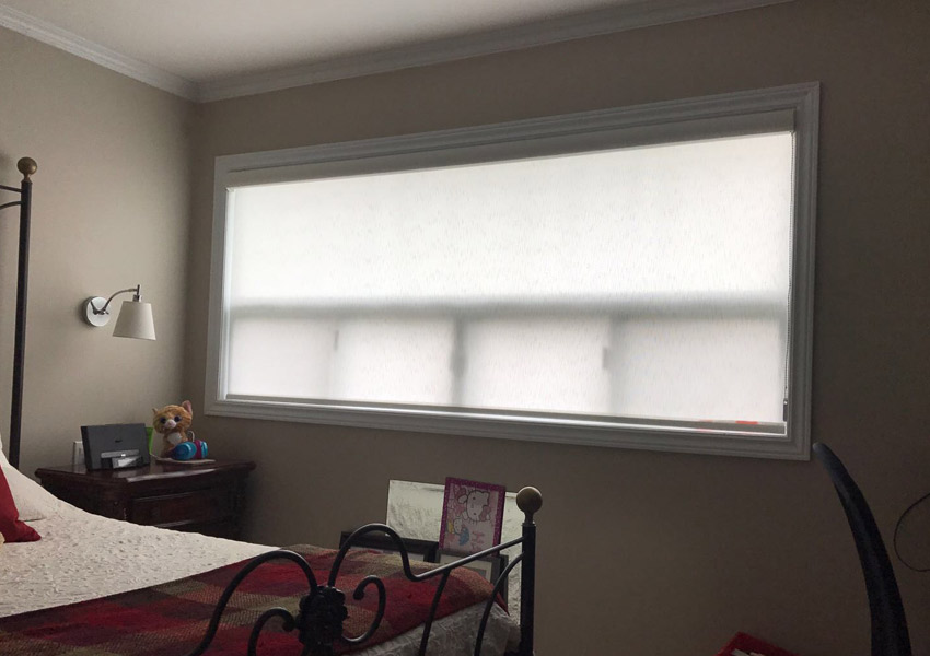 Graphic Window Shades